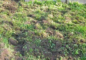 Готовим почву на участке