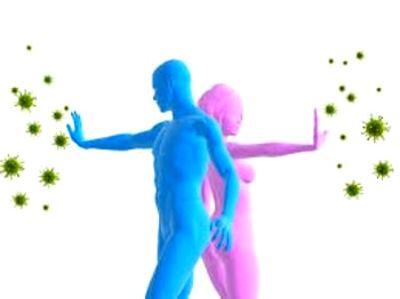 Организм против вирусов