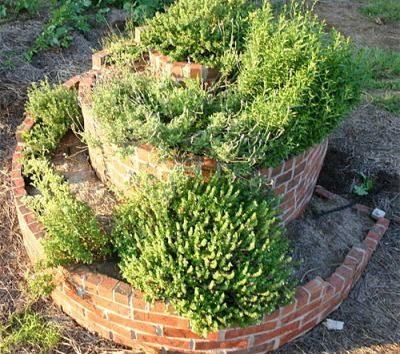Высадить декоративные растения