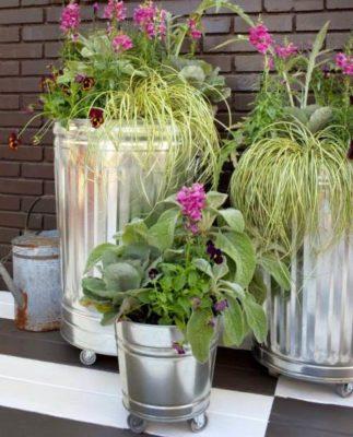 Высадить растения